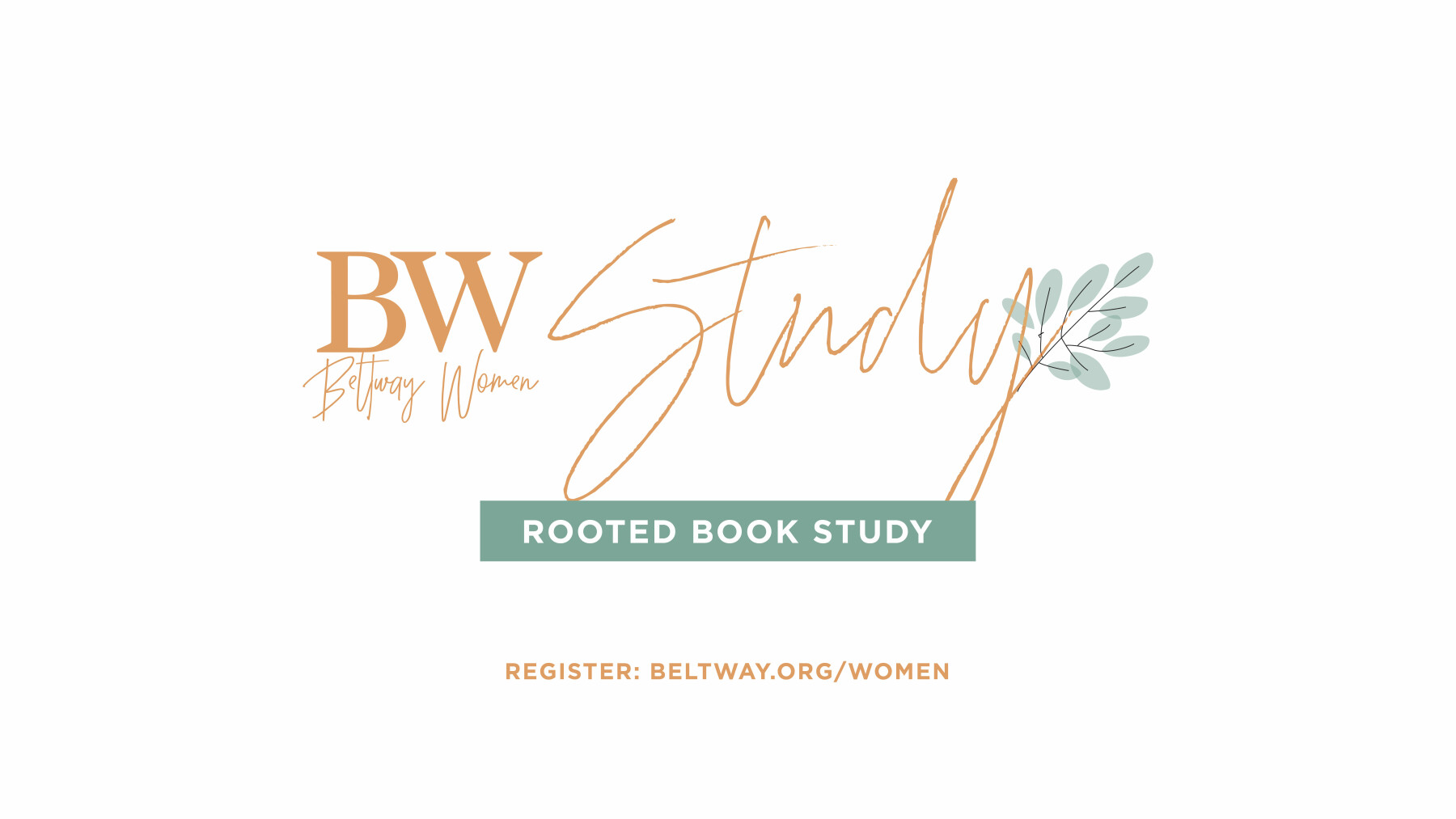 Rooted Bible Study NORTH